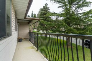 """Photo 24: 35430 ROCKWELL Drive in Abbotsford: Abbotsford East House for sale in """"east abbotsford"""" : MLS®# R2468374"""