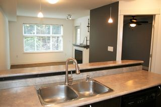 """Photo 11: 115 2515 PARK Street in Abbotsford: Abbotsford East Condo for sale in """"Viva on Park"""" : MLS®# R2255582"""