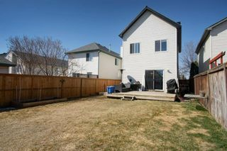 Photo 31: 26 Mt Aberdeen Link SE in Calgary: McKenzie Lake Detached for sale : MLS®# A1095540