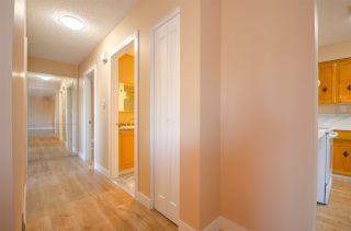 Photo 10: 1941 CHARLES Street in Port Moody: College Park PM 1/2 Duplex for sale : MLS®# R2568079