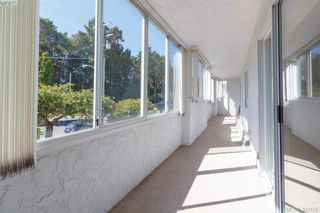 Photo 11: 204 1050 Park Blvd in VICTORIA: Vi Fairfield West Condo for sale (Victoria)  : MLS®# 768439