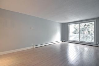 Photo 16: 406 501 57 Avenue SW in Calgary: Windsor Park Apartment for sale : MLS®# A1142596