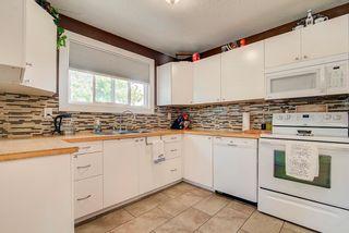 Photo 10: 4903 49 Street: Radway House for sale : MLS®# E4254548