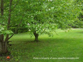 Photo 2:  in Ramara: Rural Ramara Property for sale : MLS®# X3371409