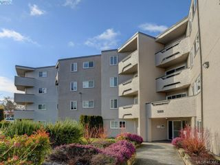 Photo 20: 404 3800 Quadra St in VICTORIA: SE Quadra Condo for sale (Saanich East)  : MLS®# 820447
