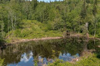 Photo 29: 12499 LOUGHEED Highway: Agassiz Land for sale : MLS®# R2617309