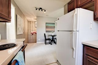 Photo 8: 5 123 13 Avenue NE in Calgary: Crescent Heights Apartment for sale : MLS®# A1106898