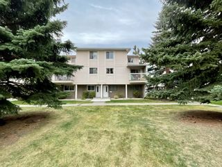 Main Photo: 105 3015 51 Street SW in Calgary: Glenbrook Row/Townhouse for sale : MLS®# A1152842