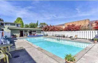 """Photo 6: 327A 8635 120 Street in Delta: Annieville Condo for sale in """"Delta Cedars"""" (N. Delta)  : MLS®# R2539226"""
