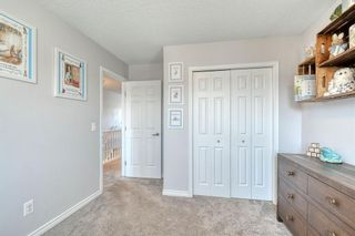 Photo 32: 358 Coventry Circle NE in Calgary: Coventry Hills Detached for sale : MLS®# A1091760