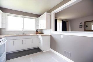 Photo 11: 971 Nairn Avenue in Winnipeg: East Elmwood Residential for sale (3B)  : MLS®# 202019032