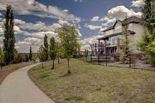 Photo 44: 24 CRANARCH Heights SE in Calgary: Cranston Detached for sale : MLS®# C4253420