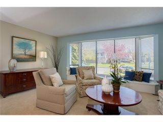 Photo 3: 9151 PARKSVILLE DR in Richmond: Boyd Park House for sale : MLS®# V1004418