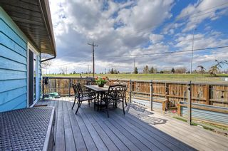 Photo 45: 420 Templeby Place NE in Calgary: Temple Detached for sale : MLS®# A1107183