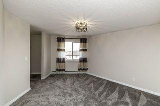 Photo 12: 329 16221 95 Street in Edmonton: Zone 28 Condo for sale : MLS®# E4250515