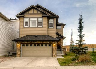 Photo 1: 165 KINCORA GLEN Rise NW in Calgary: Kincora Detached for sale : MLS®# A1045734