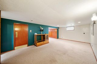 Photo 19: 3320 Dover Ridge Drive SE in Calgary: Dover Detached for sale : MLS®# A1141061