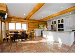 """Photo 9: 19633 8 Avenue in Langley: Campbell Valley House for sale in """"Hazelmere Valley"""" : MLS®# F1423599"""