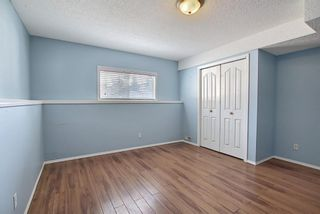 Photo 23: 181 Coopers Close SW: Airdrie Detached for sale : MLS®# A1082755