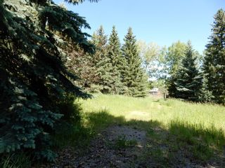 Photo 5: 112152 266 Avenue W: Rural Foothills County Residential Land for sale : MLS®# A1065931