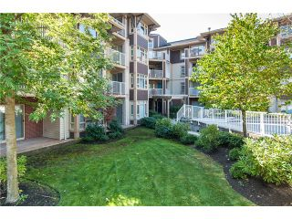 Photo 12: 205 7339 MACPHERSON Avenue in Burnaby: Metrotown Condo for sale (Burnaby South)  : MLS®# V1041731