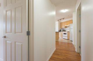 Photo 15:  in Edmonton: Zone 55 Condo for sale : MLS®# E4244419
