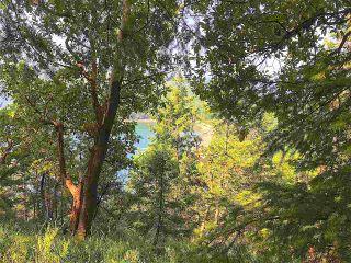 Photo 2: 4157 PORLIER PASS Road: Galiano Island Land for sale (Islands-Van. & Gulf)  : MLS®# R2391090