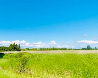 Photo 1: 13091 NO 3 Road in Richmond: Gilmore Land Commercial for sale : MLS®# C8020768