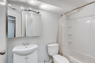 Photo 31: 87 Applebrook Circle SE in Calgary: Applewood Park Detached for sale : MLS®# A1132043