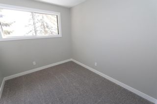 Photo 20: 547 Templeby Place NE in Calgary: Temple Detached for sale : MLS®# A1071164