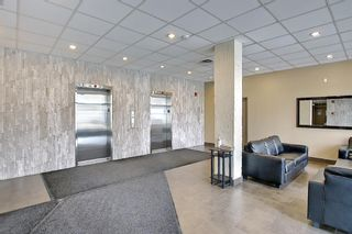Photo 29: 210 340 14 Avenue SW in Calgary: Beltline Apartment for sale : MLS®# A1104058