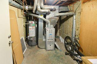 Photo 24: 3154 CARROLL St in : Vi Burnside Half Duplex for sale (Victoria)  : MLS®# 886691