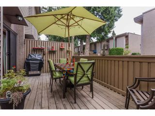 """Photo 26: 49 13809 102 Avenue in Surrey: Whalley Townhouse for sale in """"The Meadows"""" (North Surrey)  : MLS®# F1447952"""
