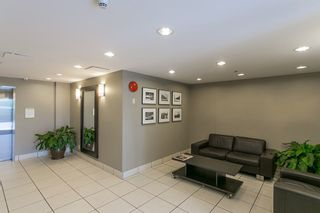 """Photo 16: 411 3811 HASTINGS Street in Burnaby: Vancouver Heights Condo for sale in """"MONDEO"""" (Burnaby North)  : MLS®# R2156944"""