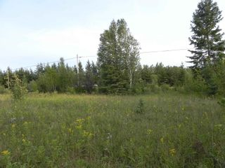 Photo 9: 22084 PT 2 PARCEL, WHITMORE RD in FORT FRANCES: Vacant Land for sale : MLS®# TB212402