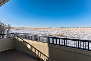 Photo 18: 402033 23 Street W: Rural Foothills County Detached for sale : MLS®# A1062078