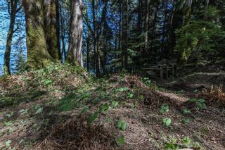 Photo 96: Lot 2 Eagles Dr in : CV Courtenay North Land for sale (Comox Valley)  : MLS®# 869395