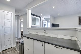 Photo 20: 1027 Penrith Crescent SE in Calgary: Penbrooke Meadows Detached for sale : MLS®# A1104837