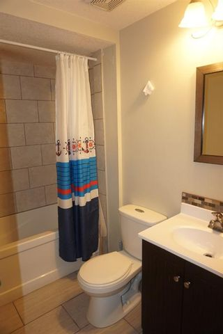 Photo 22: 1540 45 Street SE in Calgary: Forest Lawn Detached for sale : MLS®# A1129031
