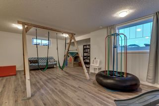 Photo 40: 283 Stonemere Green: Chestermere Detached for sale : MLS®# C4233917