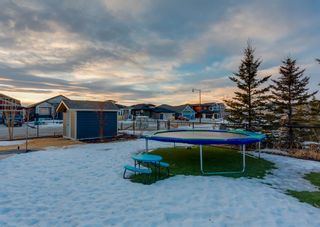 Photo 49: 2 RANCHERS View: Okotoks Detached for sale : MLS®# A1076816