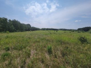 Photo 4: RR 222 TWP 504 LOT 1: Rural Leduc County Rural Land/Vacant Lot for sale : MLS®# E4254469