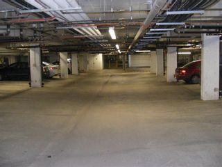 Photo 19: 206 2727 28 Avenue SE in Calgary: Dover Apartment for sale : MLS®# A1014596