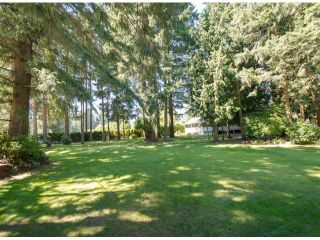 Photo 3: 13885 18TH Avenue in Surrey: Sunnyside Park Surrey House for sale (South Surrey White Rock)  : MLS®# F1431118