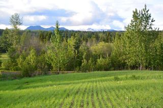 "Photo 6: DL 1220 WOODMERE Road: Telkwa Land for sale in ""WOODMERE"" (Smithers And Area (Zone 54))  : MLS®# R2397320"