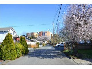 Photo 20: 1 1786 Albert Ave in VICTORIA: Vi Jubilee Row/Townhouse for sale (Victoria)  : MLS®# 664833