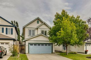 Photo 43: 18 Copperfield Crescent SE in Calgary: Copperfield Detached for sale : MLS®# A1141643