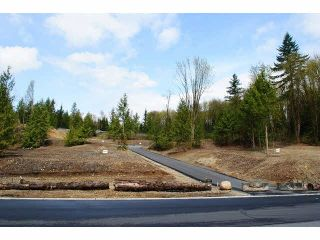 """Photo 2: 31961 KENNEY Avenue in Mission: Mission BC Land for sale in """"SPORTS PARK"""" : MLS®# F1436726"""