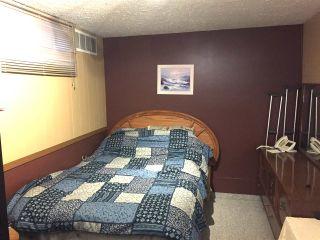 Photo 35: 42 54200 Rge Rd 265: Villeneuve House for sale : MLS®# E4240050