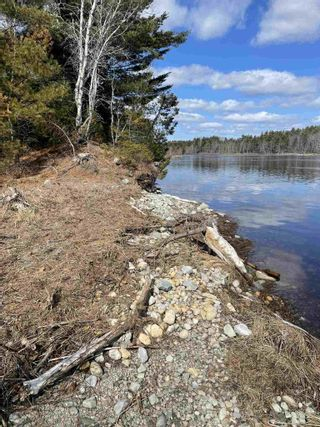 Photo 26: 465 Highway 3 in Sable River: 407-Shelburne County Residential for sale (South Shore)  : MLS®# 202105286